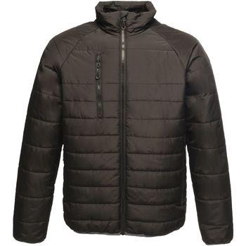 Textiel Heren Dons gevoerde jassen Regatta Glacial Zwart/Zwart