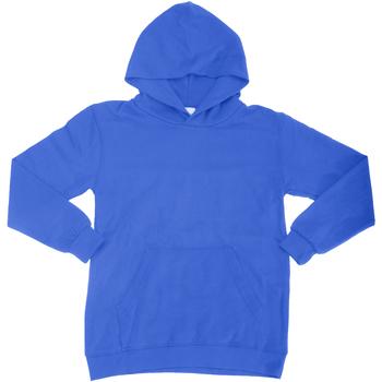 Textiel Kinderen Sweaters / Sweatshirts Sg SG27K Koninklijk