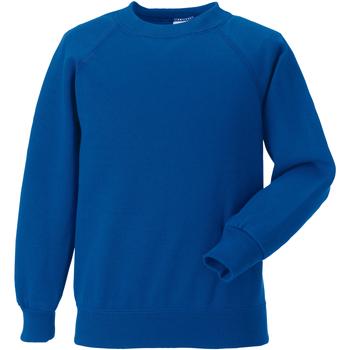Textiel Kinderen Sweaters / Sweatshirts Jerzees Schoolgear 7620B Helder Koninklijk