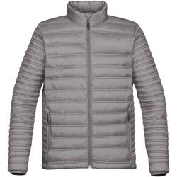 Textiel Heren Dons gevoerde jassen Stormtech ST154 Titanium