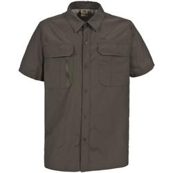 Textiel Heren Overhemden korte mouwen Trespass Colly Donkere Khaki