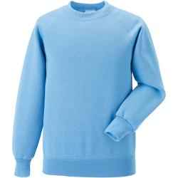 Textiel Kinderen Sweaters / Sweatshirts Jerzees Schoolgear 7620B Hemelsblauw