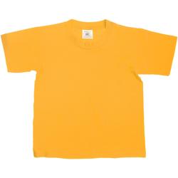 Textiel Kinderen T-shirts korte mouwen B And C Exact Goud