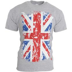 Textiel Heren T-shirts korte mouwen Gb Eye Limited  Sportgrijs