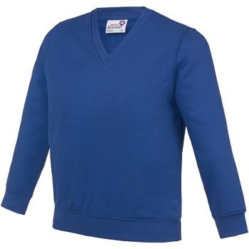 Textiel Kinderen Sweaters / Sweatshirts Awdis  Diep koninklijk