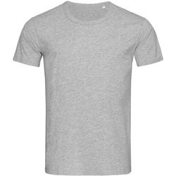 Textiel Heren T-shirts korte mouwen Stedman Stars Stars Grijs