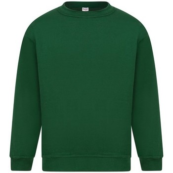 Textiel Heren Sweaters / Sweatshirts Absolute Apparel Sterling Fles