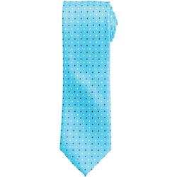 Textiel Heren Stropdassen en accessoires Premier Squares Turquoise
