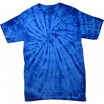 Textiel Kinderen T-shirts korte mouwen Colortone Spider Spider Royal