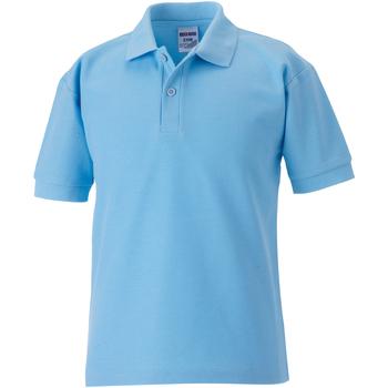 Textiel Jongens Polo's korte mouwen Jerzees Schoolgear 539B Hemelsblauw