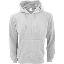 Textiel Heren Sweaters / Sweatshirts Sg SG29 Licht Oxford
