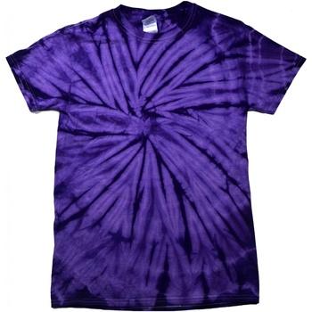 Textiel Kinderen T-shirts korte mouwen Colortone Spider Spin Paars