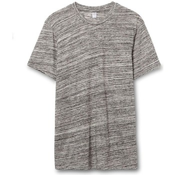 Textiel Heren T-shirts korte mouwen Alternative Apparel AT001 Stedelijk Grijs