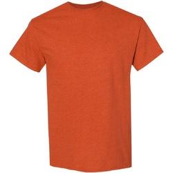 Textiel Heren T-shirts korte mouwen Gildan Heavy Antiek Oranje