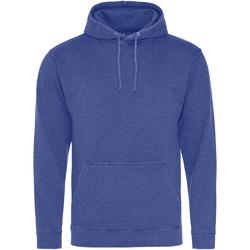 Textiel Sweaters / Sweatshirts Awdis Washed Gewassen Saffierblauw