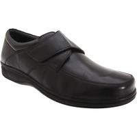 Schoenen Heren Derby Roamers Fuller Zwart