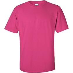Textiel Heren T-shirts korte mouwen Gildan Ultra Heliconia