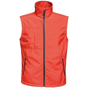 Textiel Heren Vesten / Cardigans Regatta TRA848 Klassiek rood/zwart