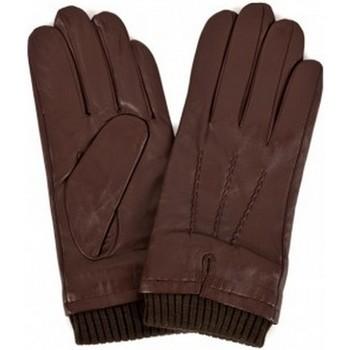 Accessoires Heren Handschoenen Eastern Counties Leather  Bruin