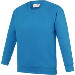 Textiel Kinderen Sweaters / Sweatshirts Awdis AC01J Saffierblauw