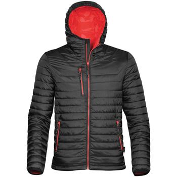 Textiel Heren Dons gevoerde jassen Stormtech Gravity Zwart/Rood