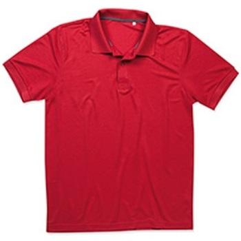 Textiel Heren Polo's korte mouwen Stedman  Peperrood