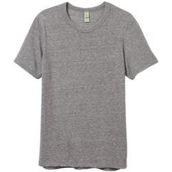 Textiel Heren T-shirts korte mouwen Alternative Apparel AT001 Eco Grijs