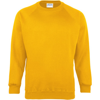 Textiel Kinderen Sweaters / Sweatshirts Maddins  Zonnebloem