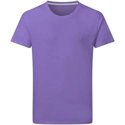 Textiel Heren T-shirts korte mouwen Sg Perfect Aster Paars
