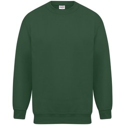 Textiel Heren Sweaters / Sweatshirts Absolute Apparel Magnum Fles