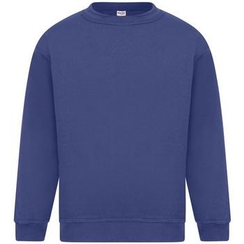 Textiel Heren Sweaters / Sweatshirts Absolute Apparel Sterling Koninklijk