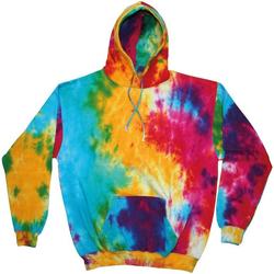 Textiel Heren Sweaters / Sweatshirts Colortone TD31M Multi-Regenboog
