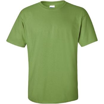 Textiel Heren T-shirts korte mouwen Gildan Ultra Kiwi