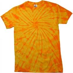 Textiel T-shirts korte mouwen Colortone Tonal Spin Goud