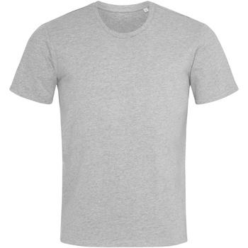 Textiel Heren T-shirts korte mouwen Stedman  Heide Grijs