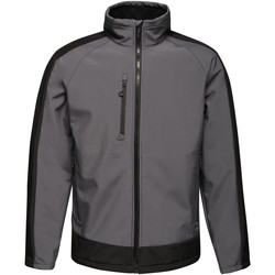Textiel Heren Wind jackets Regatta RG661 Zeehond / Zwart