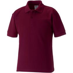 Textiel Jongens Polo's korte mouwen Jerzees Schoolgear 539B Bourgondië