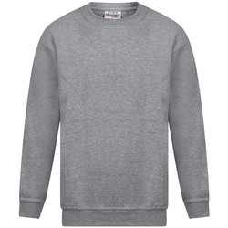 Textiel Heren Sweaters / Sweatshirts Absolute Apparel Magnum Sportgrijs