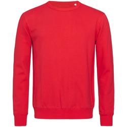 Textiel Heren Sweaters / Sweatshirts Stedman Active Karmijnrood