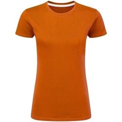 Textiel Dames T-shirts korte mouwen Sg Perfect Oranje