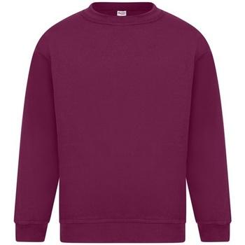 Textiel Heren Sweaters / Sweatshirts Absolute Apparel Sterling Bourgondië