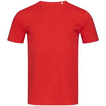 Textiel Heren T-shirts korte mouwen Stedman Stars Shawn Rood