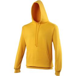Textiel Sweaters / Sweatshirts Awdis College Goud