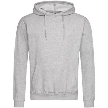 Textiel Heren Sweaters / Sweatshirts Stedman  Heide Grijs