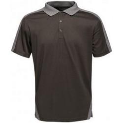Textiel Heren Polo's korte mouwen Regatta RG663 Zwart/Seal Grey