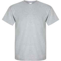 Textiel Heren T-shirts korte mouwen Gildan Ultra Sportgrijs