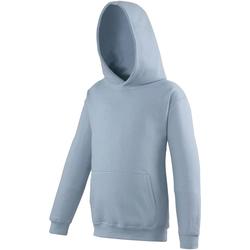 Textiel Kinderen Sweaters / Sweatshirts Awdis JH01J Hemelsblauw