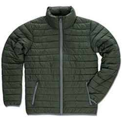 Textiel Heren Dons gevoerde jassen Stedman  Groen