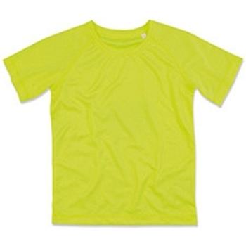 Textiel Kinderen T-shirts korte mouwen Stedman  Cybergeel