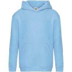 Textiel Kinderen Sweaters / Sweatshirts Fruit Of The Loom SS873 Hemel Blauw